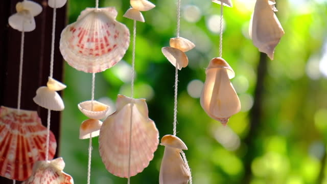 seashell mobile made from shells slow motion style - animal shell stock videos & royalty-free footage