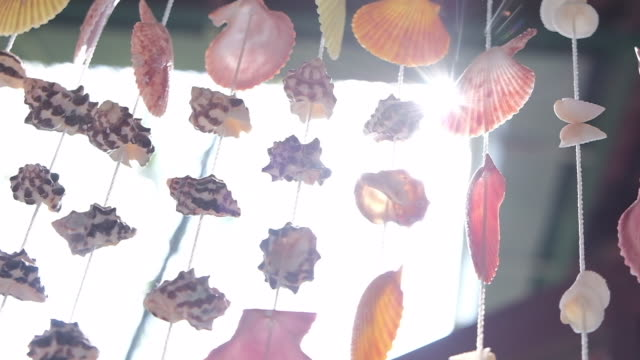 seashell mobile made from shells slowmotion - animal shell stock videos & royalty-free footage