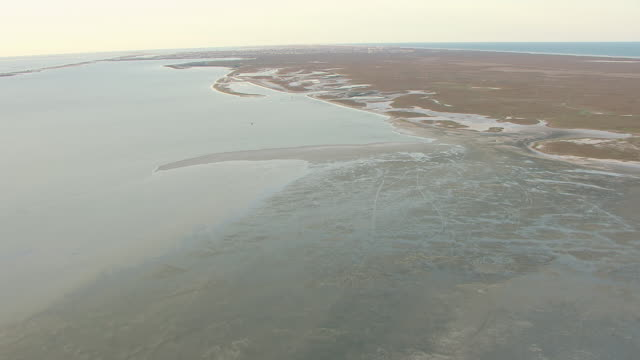 ws aerial seashore of gulf coast at padre island / texas, united states - padre stock videos & royalty-free footage