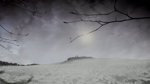 season changes from autumn to winter in countryside scene - winter stock videos & royalty-free footage