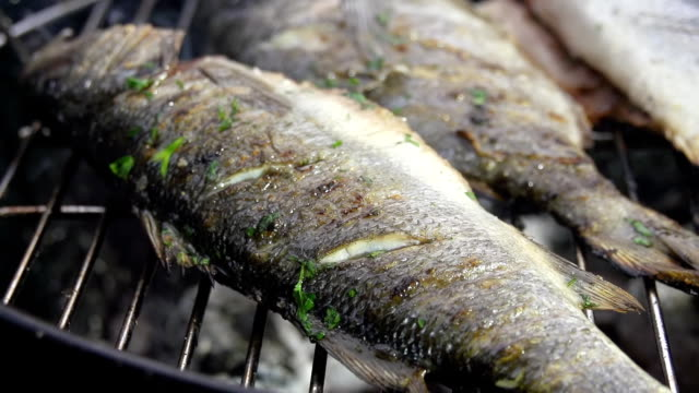 cu ds seasoning the fish with parsley - briquette stock videos & royalty-free footage
