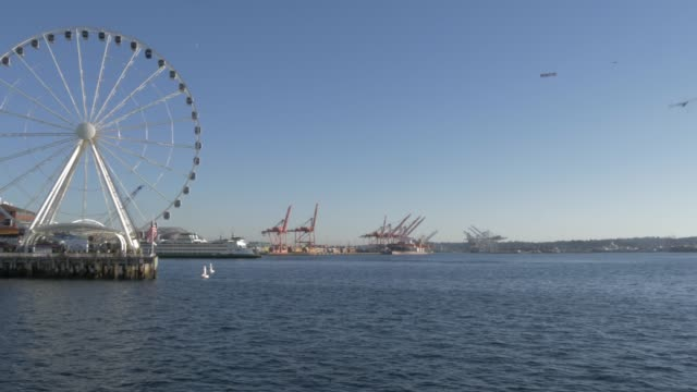 seattle great wheel and downtown from elliott bay, seattle, washington state, united states of america, north america - elliott bay stock videos & royalty-free footage