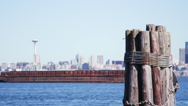 seattle skyline, wood pilings in water in the foreground - puget sound stock videos & royalty-free footage