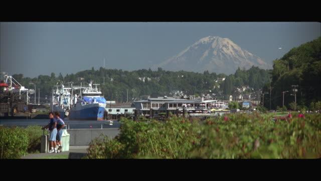 WS Seattle suburbs with Mt Rainier / Seattle, Washington, USA