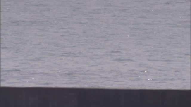 a seawall keeps rising waters at bay. - tide stock videos & royalty-free footage