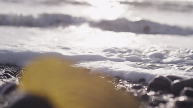 Seaweed on rocky shore, slow motion close up