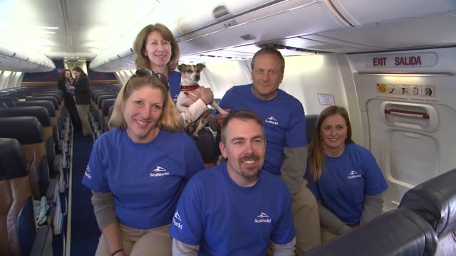 stockvideo's en b-roll-footage met seaworld rescue team members and suzanne pelisson beasley at sixty hurricane sandy pets take charter flight to new holiday home at newark liberty... - new jersey