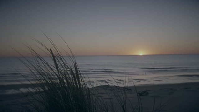 14 second beach dunes sunset timelapse.
