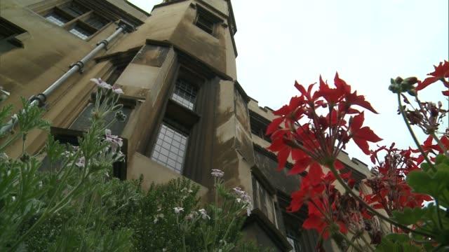 secret garden open to public; england: london se1: lambeth palace: ext gv lambeth palace reporter entering palace door closing low angle shot of... - ブンブン鳴る点の映像素材/bロール