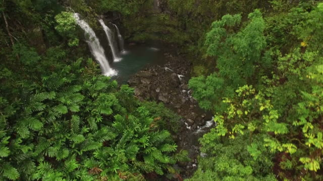 secret small waterfalls on maui island in tropical forest - butte rocky outcrop stock videos & royalty-free footage