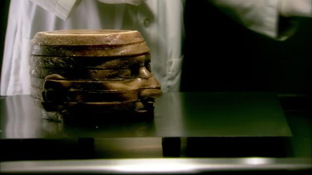 vídeos y material grabado en eventos de stock de sectioned head - falso