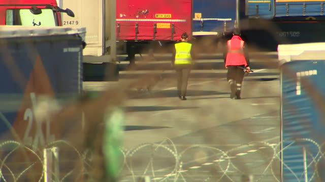 security at port of zeebrugge including barbed wire cctv sniffer dogs and scanners to help prevent smuggling people across the english channel - trafficking stock videos & royalty-free footage