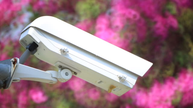 cctv security camera in garden - following moving activity stock videos & royalty-free footage