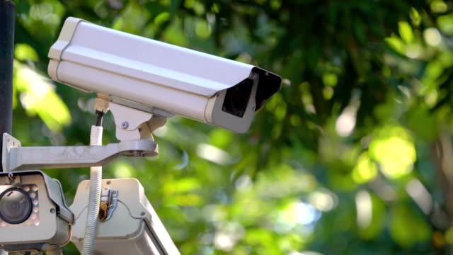 vídeos de stock, filmes e b-roll de sistema de câmera de segurança com fundo verde. - sob proteção