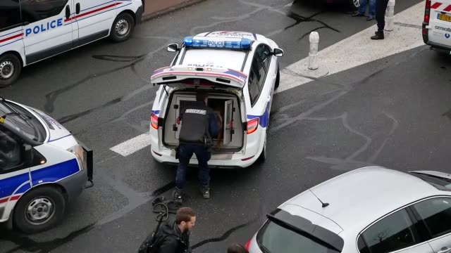 vídeos y material grabado en eventos de stock de security forces at paris' orly airport killed a man who were trying to capture a weapon from a soldier the interior ministry said on march 16 2017 in... - perro cazador