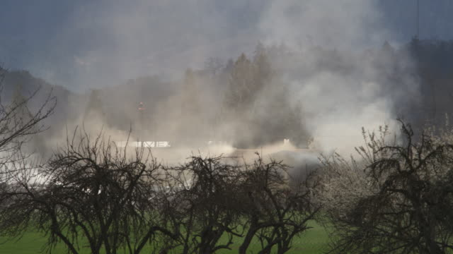 seen from behind a screen of trees, smoke veils a burning house; firemen work close by - myrtle creek stock videos and b-roll footage