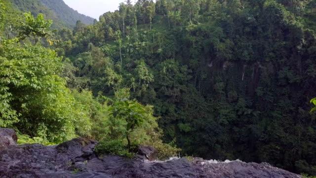 sekumpul fiji waterfall singaraja bali top down drone view - singaraja stock videos & royalty-free footage