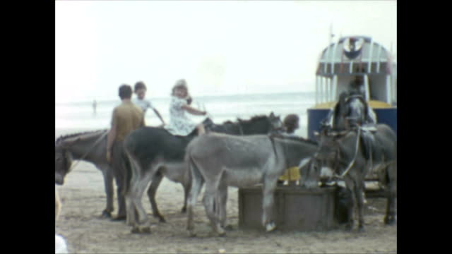 selection of shots of children enjoying donkey rides on the beach at weston-super-mare in somerset england 1970s / the grand pier / donkey pulling a... - pier stock videos & royalty-free footage