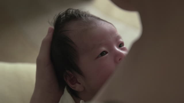 4k, selective focus, breastfeeding a newborn baby - new life stock videos & royalty-free footage