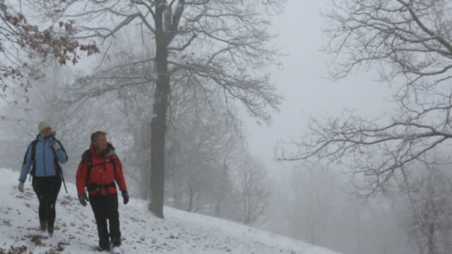 vídeos de stock, filmes e b-roll de selective focus of couple hiking in snowstorm - mitten