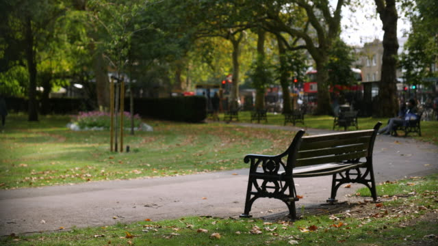 selective focus slomo empty park bench - bench stock videos & royalty-free footage