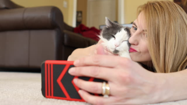 selfies with kitty - only mature women stock videos and b-roll footage
