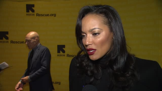 interview selita ebanks discusses why she wanted to attend tonight's event and how anyone can get involved with irc's work at 2015 international... - waldorf astoria new york stock videos & royalty-free footage