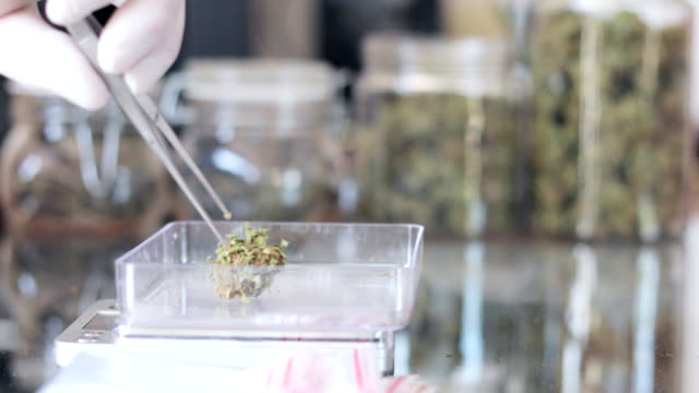 selling and buying cannabis in cannabis dispensary - selling stock videos & royalty-free footage