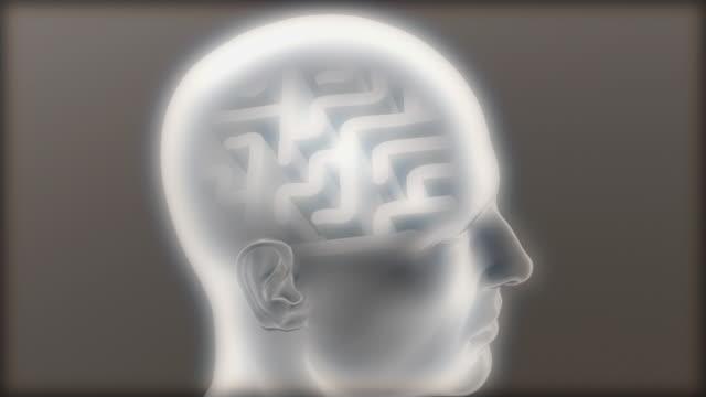 vidéos et rushes de cgi cu semi transparent human head with maze at place of brain / greece - santé mentale