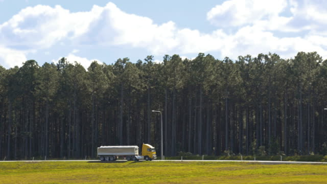 semi-trucks driving beside forest 4k - pine stock videos & royalty-free footage