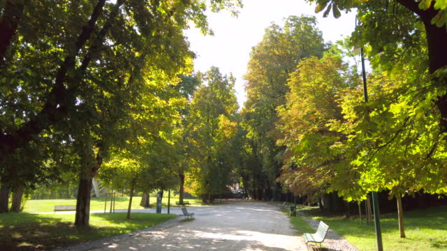 sempione park in milan - public park video stock e b–roll