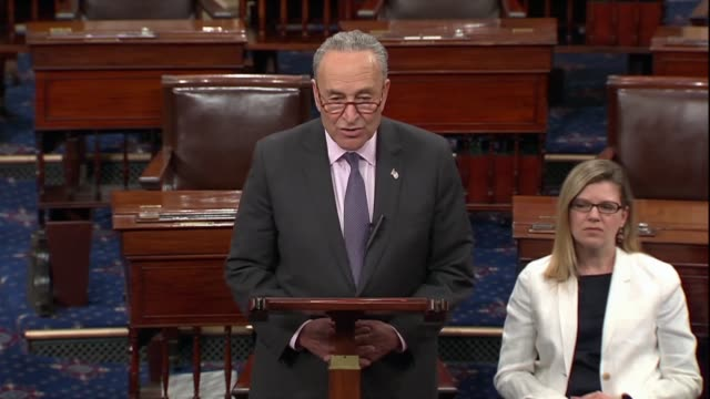 senate democrat leader charles schumer of new york says there was a concerted effort to circle the wagons to protect president donald trump from... - 白しっくい塗点の映像素材/bロール