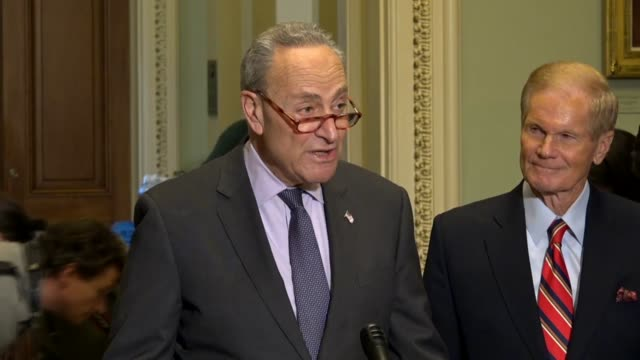 Senate Minority Leader Chuck Schumer of New York says in a statement to reporters in Washington that the hallmark of democracy is that every vote...
