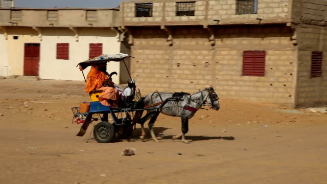 Senegal, Podor, cart pulled by a horse crossing the town