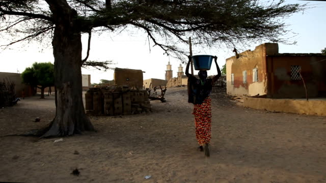 senegal, podor, djatar village, from the well - carrying stock videos & royalty-free footage