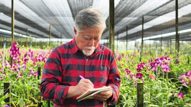l'adulto anziano nota le informazioni sul taccuino per tenere traccia della crescita delle orchidee. - idroponica video stock e b–roll