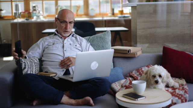 senior adult working from home oh his sofa with his dog next to him - pets stock videos & royalty-free footage