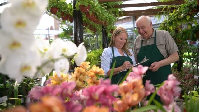 ältere erwachsene in ihrem familienbetrieb gartenmitte bestandsaufnahme der pflanzen zeigen und schreiben auf einem klemmbrett beide lächeln - gartengerät stock-videos und b-roll-filmmaterial
