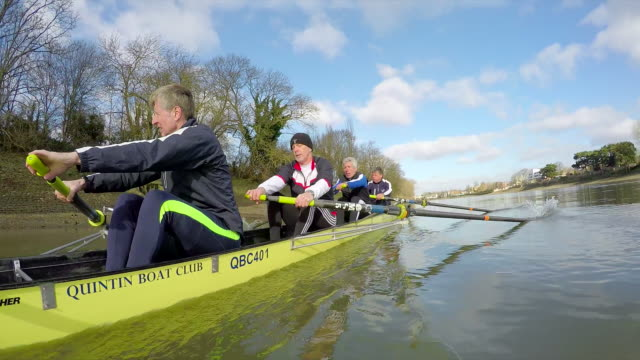 senior adults rowing - oar stock videos and b-roll footage