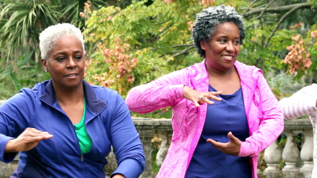 senior african american women doing tai chi in a park - exercise class stock videos & royalty-free footage