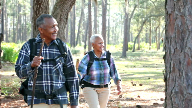 senior african-american couple hiking in the woods - senior adult stock videos & royalty-free footage