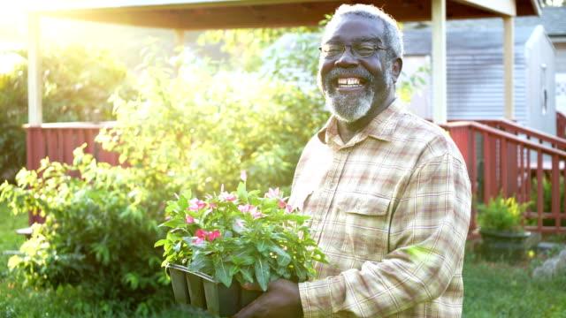 senior african-american man gardening - waist up stock videos & royalty-free footage