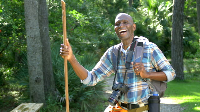 senior african-american man hiking in the woods - plaid shirt stock videos & royalty-free footage