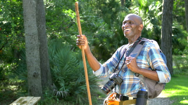 senior african-american man hiking in the woods - hiking pole stock videos & royalty-free footage