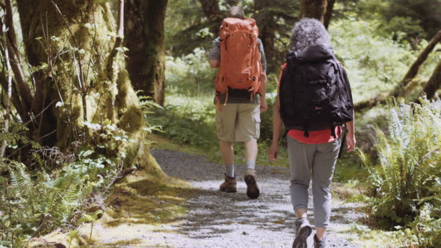 senior aged couple backpacking through the woods - pacific northwest usa stock videos & royalty-free footage