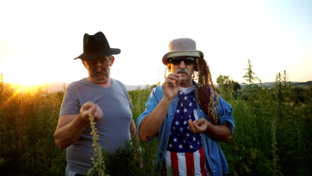 senior american patriots smoking joint - medical supplies stock videos and b-roll footage