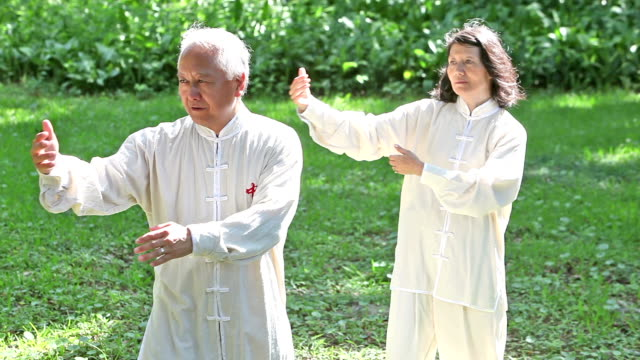 Senior Asian couple practicing tai chi together