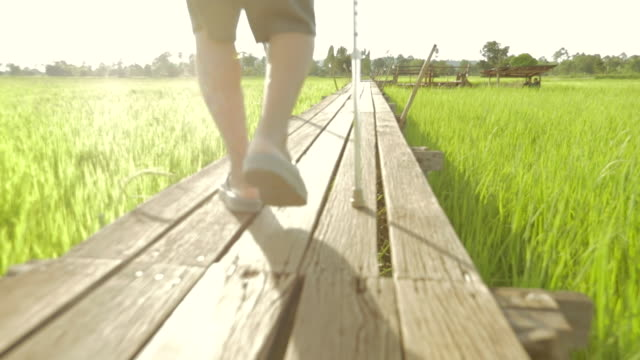 vídeos de stock e filmes b-roll de senior asian male walking with stick , concepts healthy lifestyle , slow motion - trilho