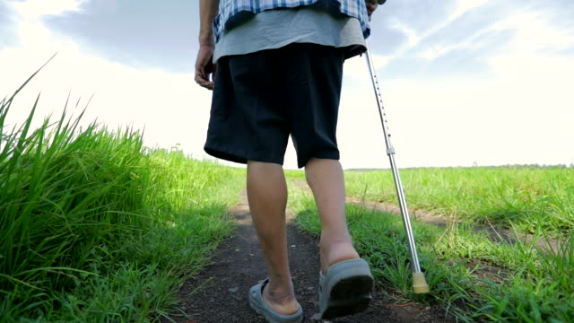 senior asian male walking with stick in the nature , concept healthy, slow motion - one senior man only stock videos and b-roll footage