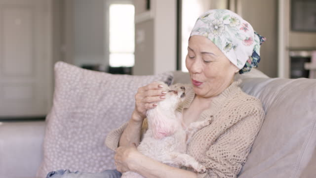 senior asian woman with cancer at home - recovery stock videos & royalty-free footage